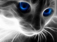 """Картина стразами """"Кошачий взгляд"""" AJ-1232"""